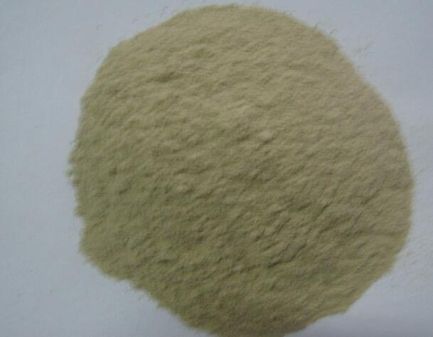 厂家直销 海鲜粉调味料 食用鱼粉 特级海鲜调味料 原料 无添加剂
